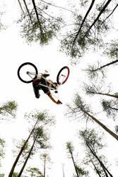 BMX dirt jump by sure80