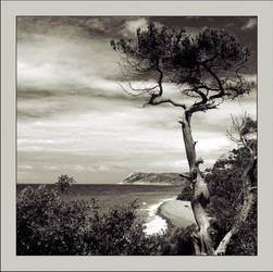 Sea landscape... by Koptelov
