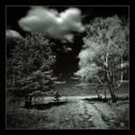 Landscapes IR by Koptelov