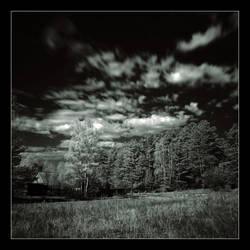 landscapes ... ir by Koptelov