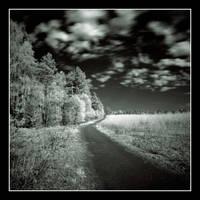 Landscapes .... ir by Koptelov