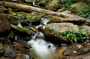 Amicalola Falls 4 by rctfan2
