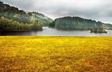 Fields of Gold by rctfan2