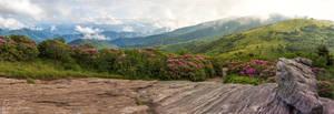 Jane Bald Panorama by rctfan2