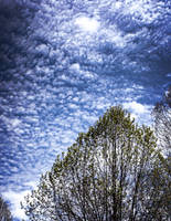 Spring clouds by nadril83