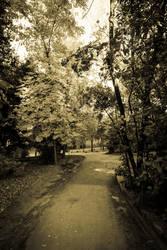 Entering to Wonderland by nadril83