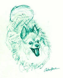 Sambu is Green by spiritwolf77
