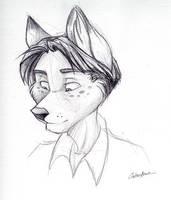 Shaded Kaid Portrait by spiritwolf77
