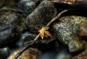 The Waiting by HeatherWaller-Rivet