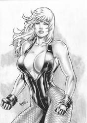 Black Canary by DLimaArt