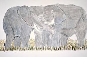 Elephant Cuddle by elephanza