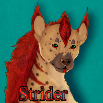COM - Strider badge by SilverHowler