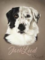 JackLeod by Skyzune ART by SKYZUNE-CREATION