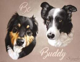 BO and BUDDY by skyzune ART by SKYZUNE-CREATION