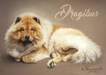DRAGIBUS by SKYZUNE-CREATION