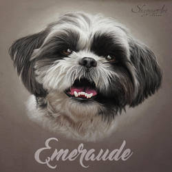 EMERAUDE by Skyzune ART by SKYZUNE-CREATION