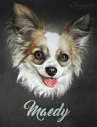 MAEDY by Skyzune ART by SKYZUNE-CREATION