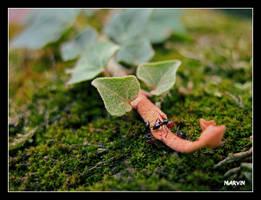 trois fourmis by PsykoMarvin