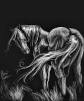 sketchy horse by Kahmira