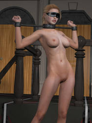 NS90 - The house of submission by MndlessEntertainment