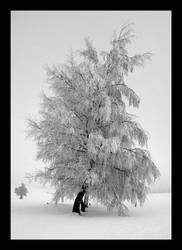 Frozen Tree by pitchblacknight
