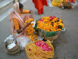 fiori india by Candni
