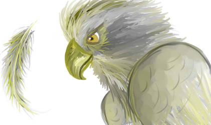 Eagle WIP by izze-bee