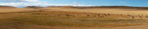 Great Plains 2007-08-21 by eRality