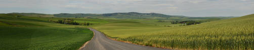 Palouse 2012-06-30 5 by eRality