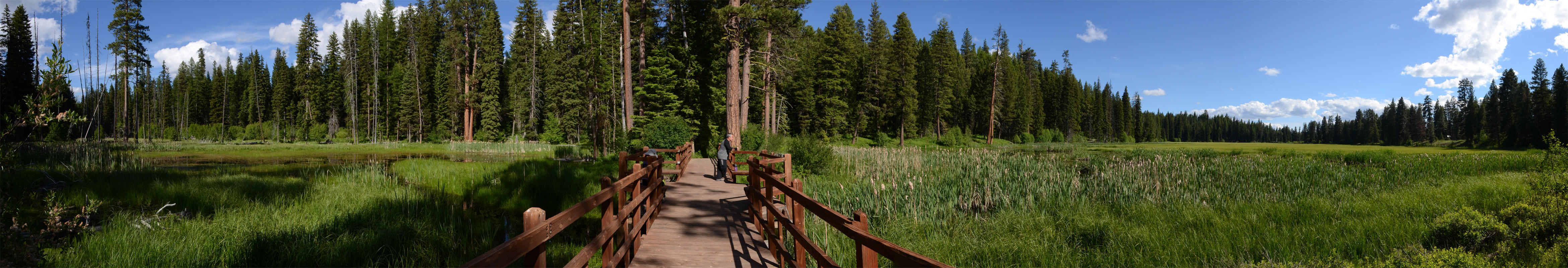 Lily Marsh Trail by eRality