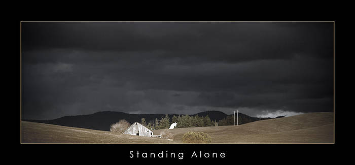 Standing Alone by whitelouis