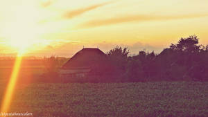 Sunshine by ItsJustAboutColors