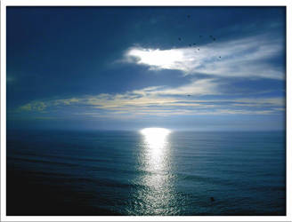 A rip of light on the sea by goncalo