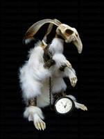 White Rabbit Allusion by KKallweit
