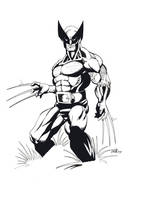 Wolverine by billmeiggs