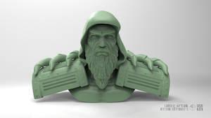 Imperial Commander (B) Bust by erenozel