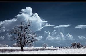Fields in a storm by dakoo