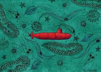 Ocean by Kelpiekorn