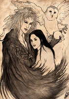 Labyrinth - Jareth and Sarah by saphir93