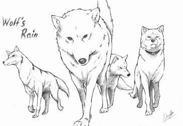 Wolf's Rain by Dante947