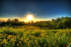 Morning in Ershovo by konstantingl