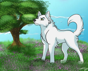 Kiba White Fang Commision by Omega6421