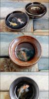1:12 Koi Pots by PepperTreeArt