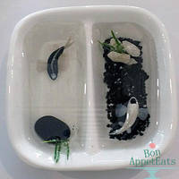 Yin Yang Miniature Koi Pond by PepperTreeArt