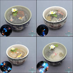New Miniature Sake Cup Ponds by PepperTreeArt