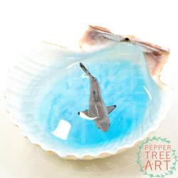 Blacktip Shark Sea Shell Pond by PepperTreeArt