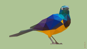 Low Poly Bird by Caen-N