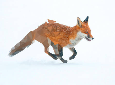 Fox Broken Low Poly by Caen-N