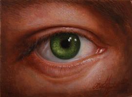 The eye (oil on panel) by KaradjinovicMarko