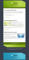 BizLetter - E-mail Template by m-biz